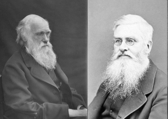 Charles Darwin y Alfred Russell Wallace