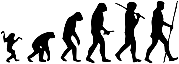 Human-evolution-man
