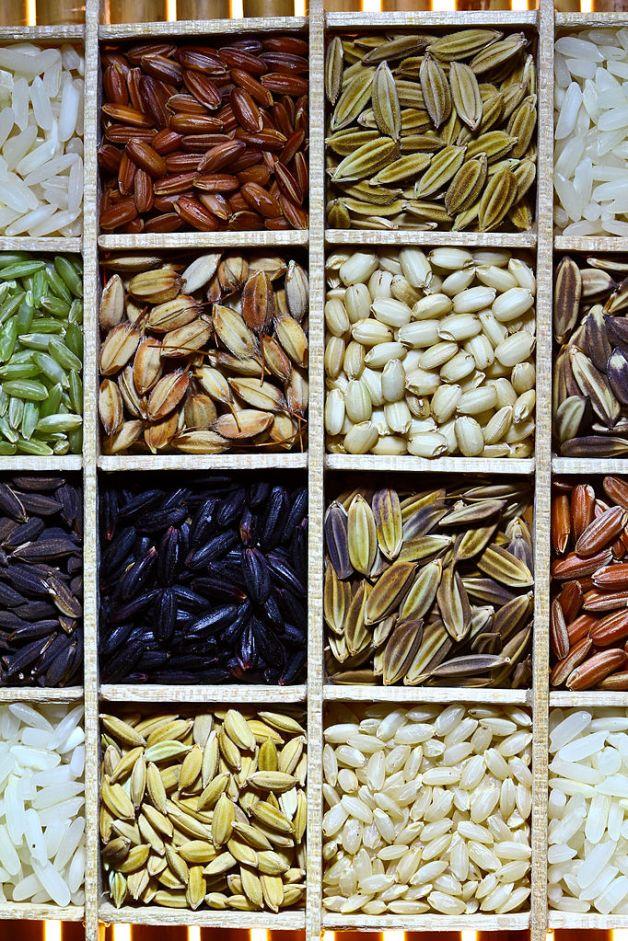 Diversidad de arroz a nivel mundial