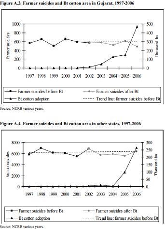 Suicidios vs. incremento en cultivos de algodón Bt