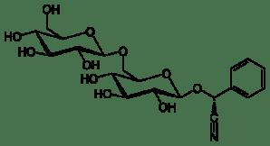 Molécula de amigdalina