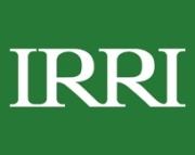 Instituto Internacional de Investigación del Arroz