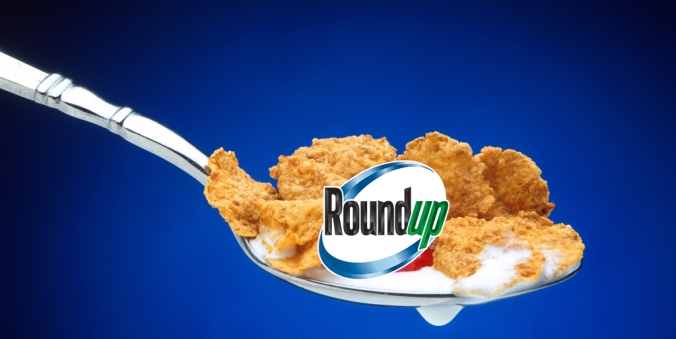 Cereal con Roundup.